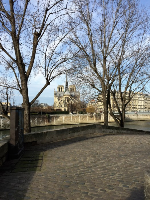 Cobblestone_Île_Saint_Louis_Quai_Orleans_30joursaparis