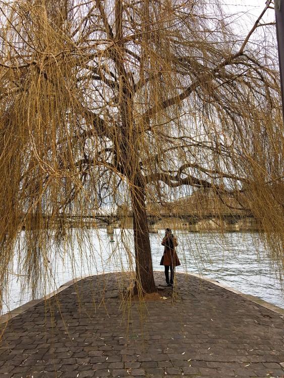 Paris-em-Novembro-bistrot-paisagem-30joursaparis